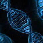 何でも先延ばしにするのは遺伝子のせいらしい