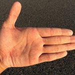 左手(非利き手)に右手よりも優れた能力があることが明らかになったらしい