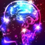 脳がとろける感覚を体感できる動画ってのを視た