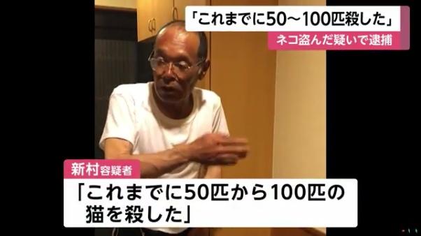 新村健治「これまでに50匹から100匹の猫を殺した」