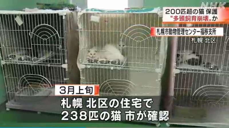 札幌市北区の一軒家で猫238匹を保護 猫の骨が大量に散らばる 一軒家には50代の夫婦と息子
