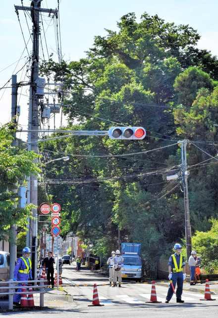 東京都八王子市の神社「天満社」の「ご神木」を行政代執行で伐採 伐採費用は約1250万円1