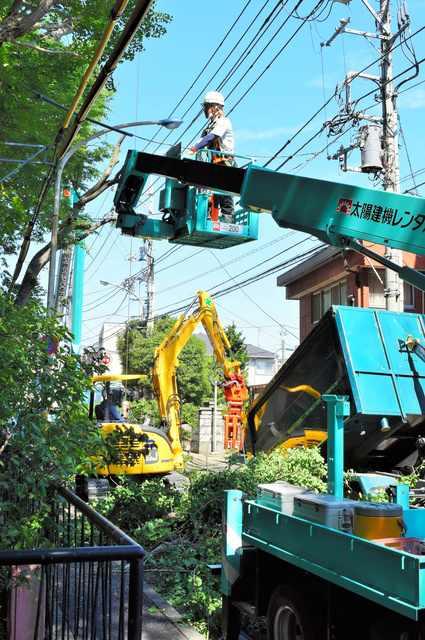東京都八王子市の神社「天満社」の「ご神木」を行政代執行で伐採 伐採費用は約1250万円4