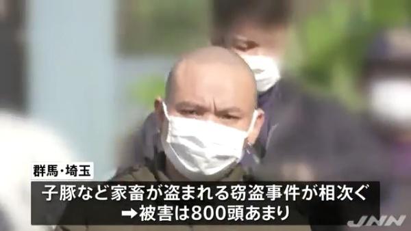 豚約670頭などの家畜盗難で群馬県太田市新田上中町にあるベトナム人グループの住宅を家宅捜索 不法残留で逮捕