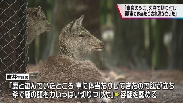 吉井勇人容疑者「車に体当たりしてきたので腹が立った」