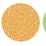 「4色型色覚」の持ち主かどうかチェックしてみた